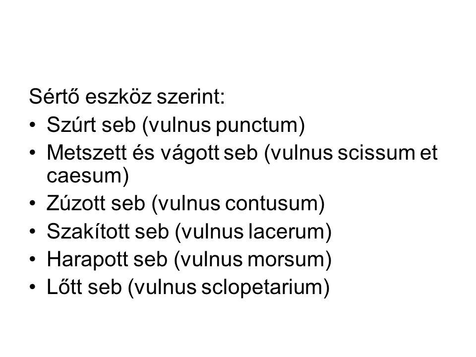 Sértő eszköz szerint: Szúrt seb (vulnus punctum) Metszett és vágott seb (vulnus scissum et caesum) Zúzott seb (vulnus contusum) Szakított seb (vulnus