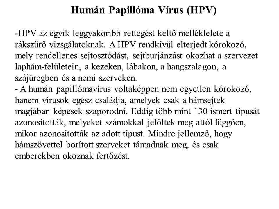 Humán Papillóma Vírus (HPV) -HPV az egyik leggyakoribb rettegést keltő melléklelete a rákszűrő vizsgálatoknak.