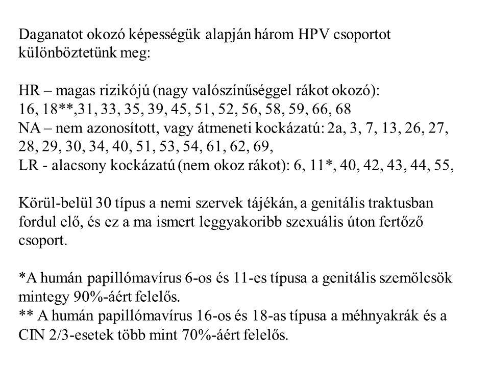 Daganatot okozó képességük alapján három HPV csoportot különböztetünk meg: HR – magas rizikójú (nagy valószínűséggel rákot okozó): 16, 18**,31, 33, 35, 39, 45, 51, 52, 56, 58, 59, 66, 68 NA – nem azonosított, vagy átmeneti kockázatú: 2a, 3, 7, 13, 26, 27, 28, 29, 30, 34, 40, 51, 53, 54, 61, 62, 69, LR - alacsony kockázatú (nem okoz rákot): 6, 11*, 40, 42, 43, 44, 55, Körül-belül 30 típus a nemi szervek tájékán, a genitális traktusban fordul elő, és ez a ma ismert leggyakoribb szexuális úton fertőző csoport.