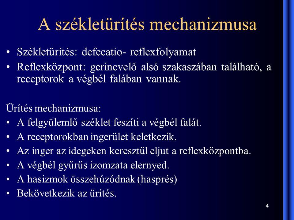 4 A székletürítés mechanizmusa Székletürítés: defecatio- reflexfolyamat Reflexközpont: gerincvelő alsó szakaszában található, a receptorok a végbél falában vannak.