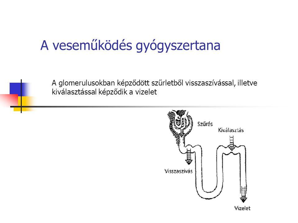 A veseműködés gyógyszertana A glomerulusokban képződött szűrletből visszaszívással, illetve kiválasztással képződik a vizelet