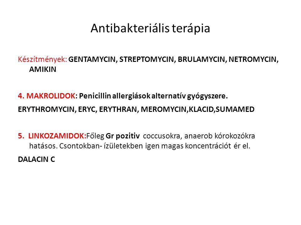 Antibakteriális terápia Készítmények: GENTAMYCIN, STREPTOMYCIN, BRULAMYCIN, NETROMYCIN, AMIKIN 4. MAKROLIDOK: Penicillin allergiások alternatív gyógys