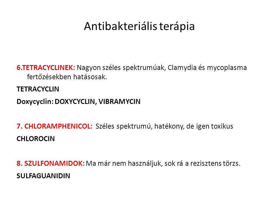 Antibakteriális terápia 6.TETRACYCLINEK: Nagyon széles spektrumúak, Clamydia és mycoplasma fertőzésekben hatásosak. TETRACYCLIN Doxycyclin: DOXYCYCLIN