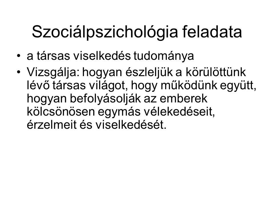 Sztereptípiák 7.