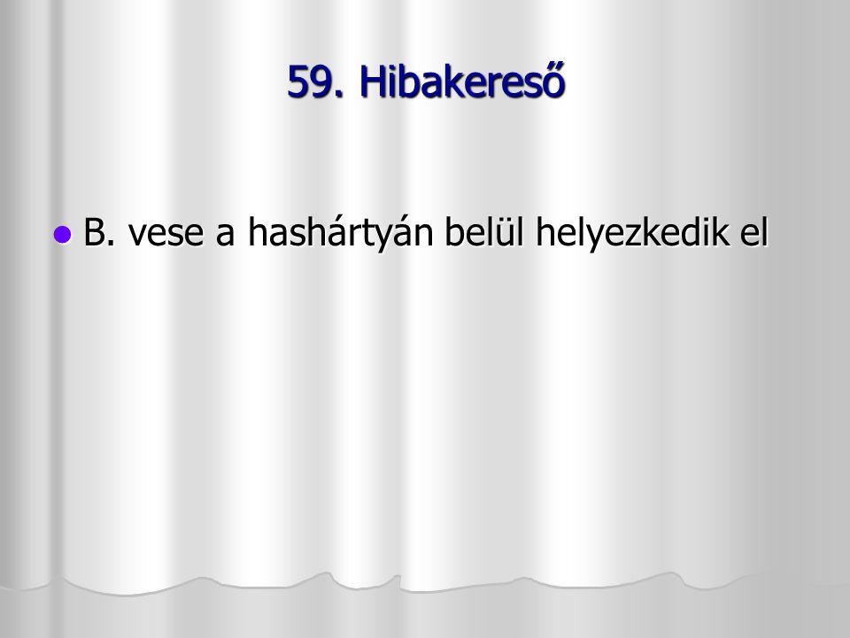 59. Hibakereső B. vese a hashártyán belül helyezkedik el B. vese a hashártyán belül helyezkedik el