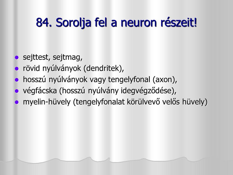 sejttest, sejtmag, sejttest, sejtmag, rövid nyúlványok (dendritek), rövid nyúlványok (dendritek), hosszú nyúlványok vagy tengelyfonal (axon), hosszú n