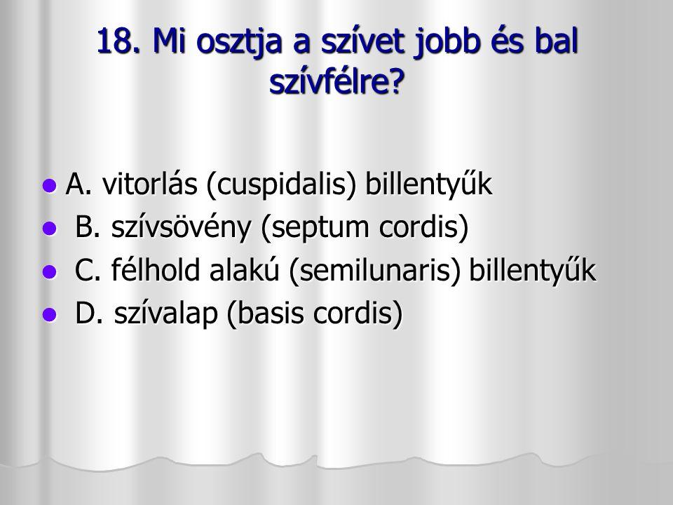 18. Mi osztja a szívet jobb és bal szívfélre? A. vitorlás (cuspidalis) billentyűk A. vitorlás (cuspidalis) billentyűk B. szívsövény (septum cordis) B.