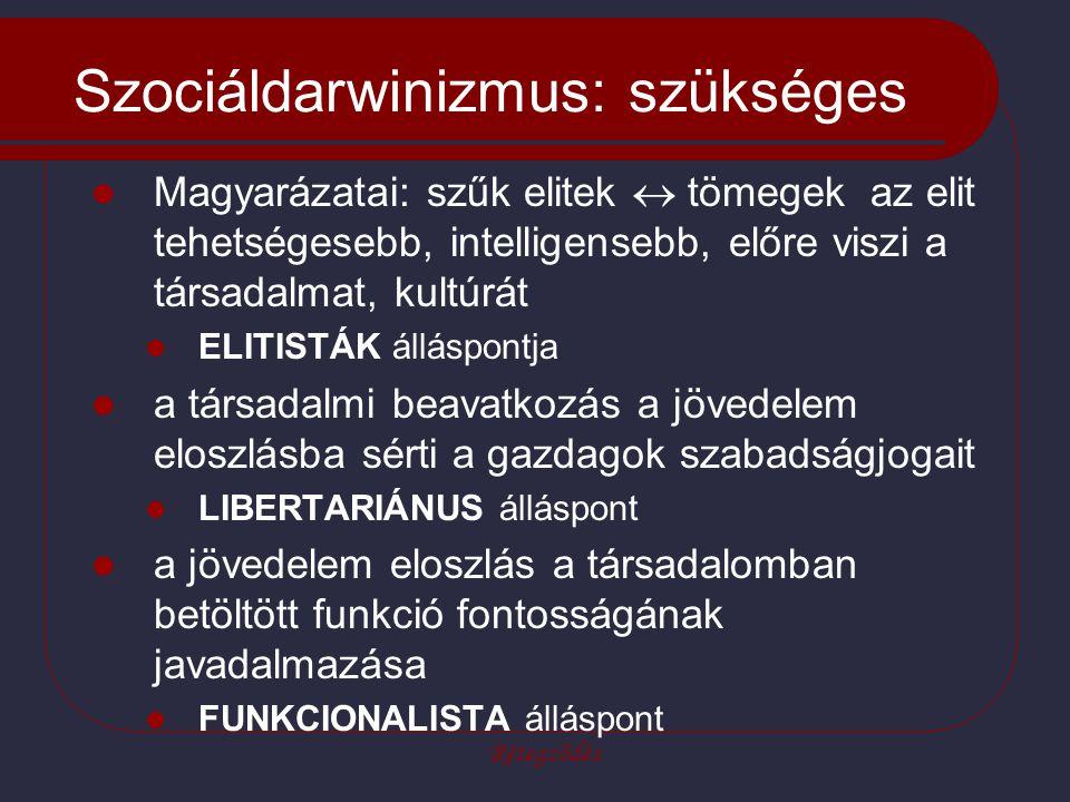 Rétegződés Szociáldarwinizmus: szükséges Magyarázatai: szűk elitek  tömegek az elit tehetségesebb, intelligensebb, előre viszi a társadalmat, kultúrá
