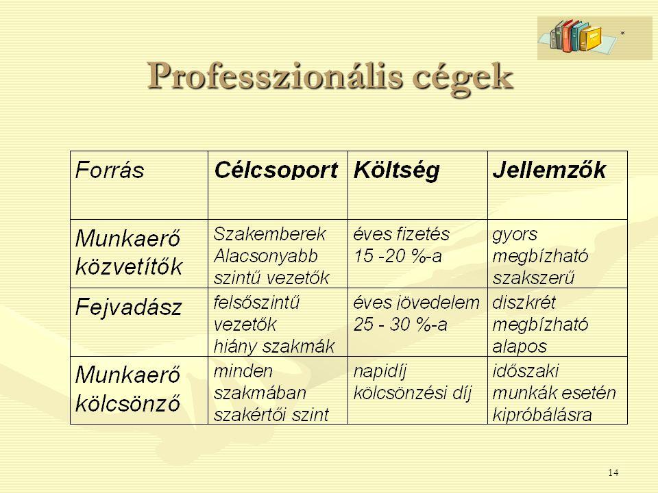 14 Professzionális cégek *