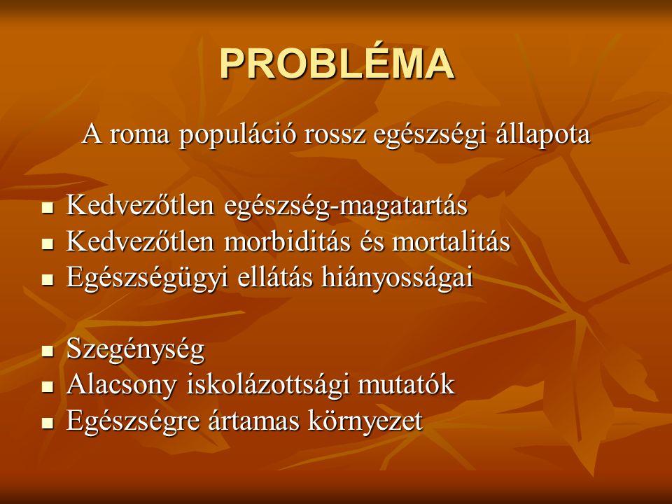 PROBLÉMA A roma populáció rossz egészségi állapota Kedvezőtlen egészség-magatartás Kedvezőtlen egészség-magatartás Kedvezőtlen morbiditás és mortalitás Kedvezőtlen morbiditás és mortalitás Egészségügyi ellátás hiányosságai Egészségügyi ellátás hiányosságai Szegénység Szegénység Alacsony iskolázottsági mutatók Alacsony iskolázottsági mutatók Egészségre ártamas környezet Egészségre ártamas környezet