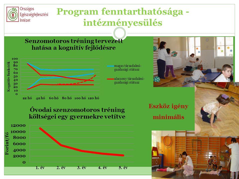Program fenntarthatósága - intézményesülés Eszköz igény minimális
