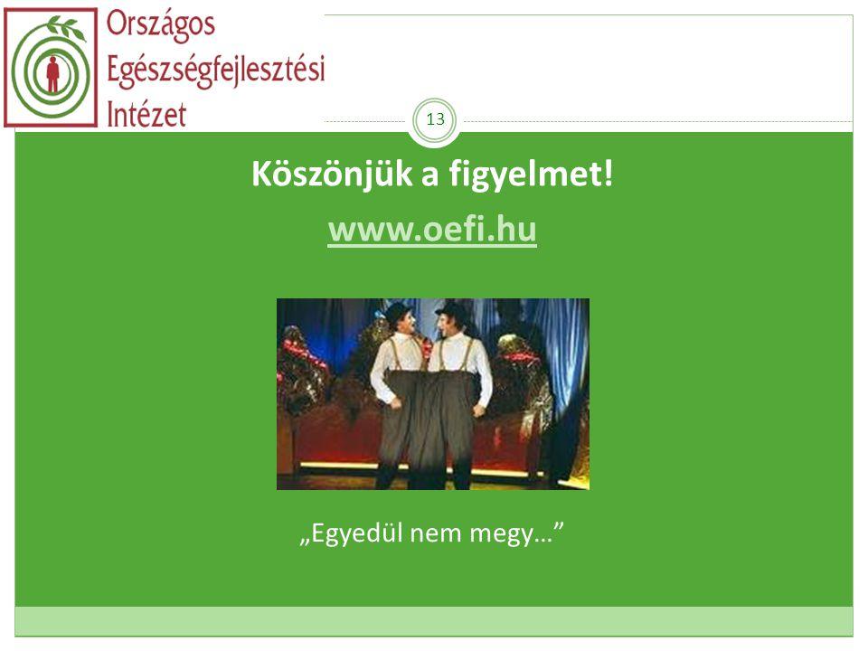 """Köszönjük a figyelmet! www.oefi.hu Fekete Krisztina 13 """"Egyedül nem megy…"""