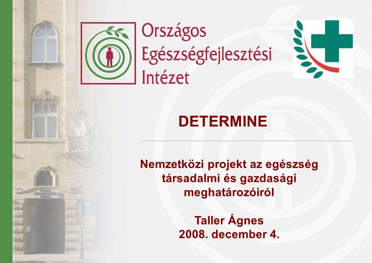 Nemzetközi projekt az egészség társadalmi és gazdasági meghatározóiról Taller Ágnes 2008.