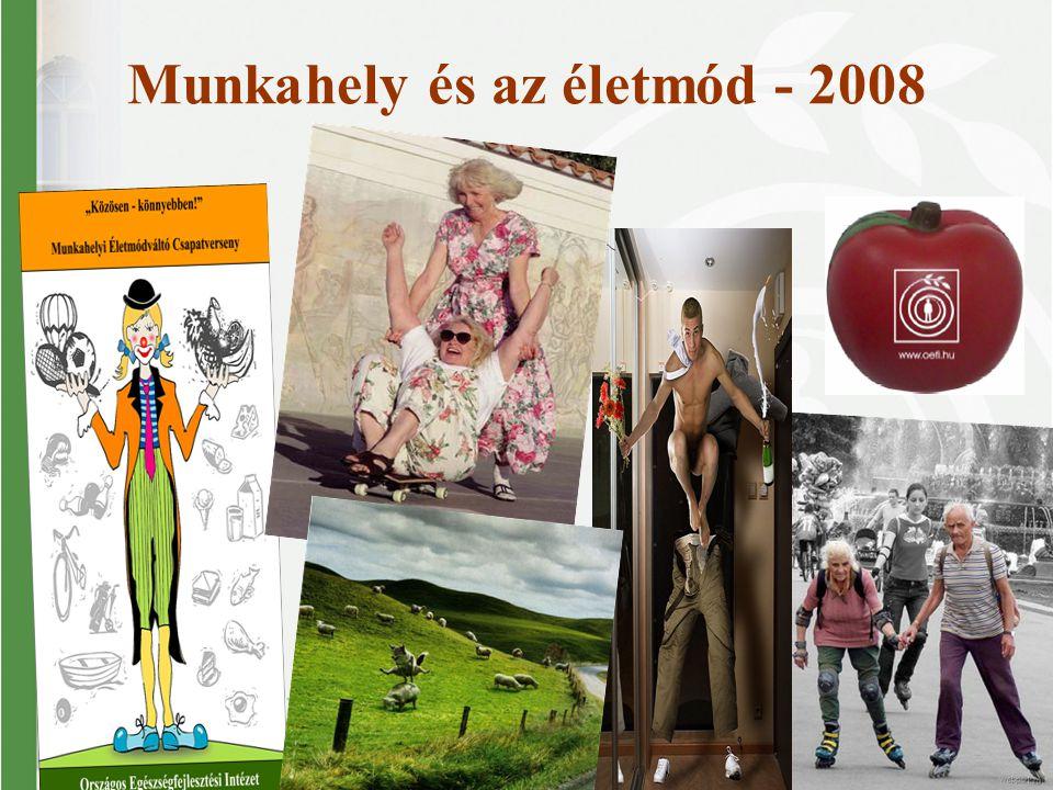 Munkahely és az életmód - 2008