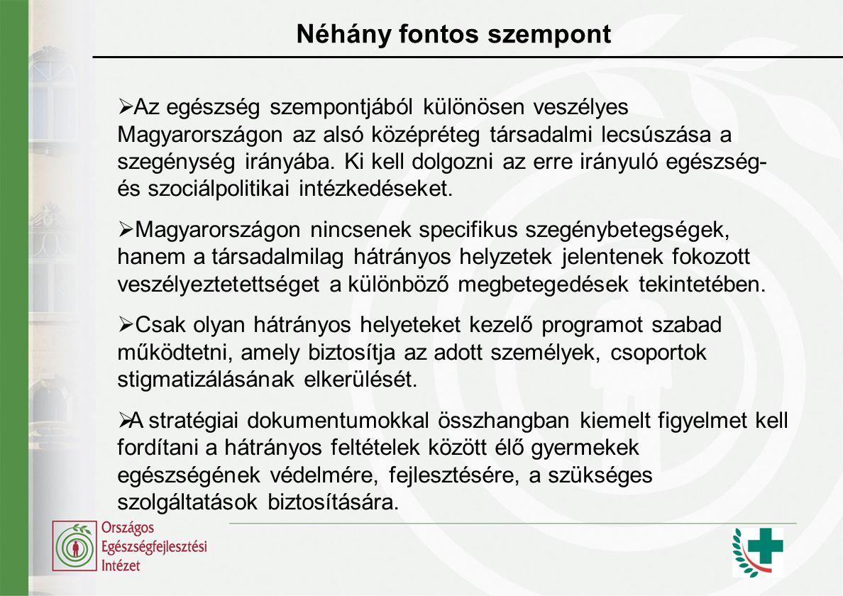 Tennivalók a közeljövőben  Az Új Magyarország Fejlesztési Tervben tervezett intézkedések teljes körű és hatékony végrehajtásának megkezdése  A Nemzeti Fejlesztési Terv különböző szakpolitikai intézkedései közötti összhang és egymást erősítő hatások elősegítése az egészség érdekében  A fejlesztések egészséghatás vizsgálata, különös tekintettel az egészséggel kapcsolatos egyenlőtlenségekre  A Népegészségügyi Program eddigi tevékenységeinek átfogó, őszinte kritikai elemzése az egyenlőtlenségekre gyakorolt hatás szemszögéből  Célirányos képzések és kutatások