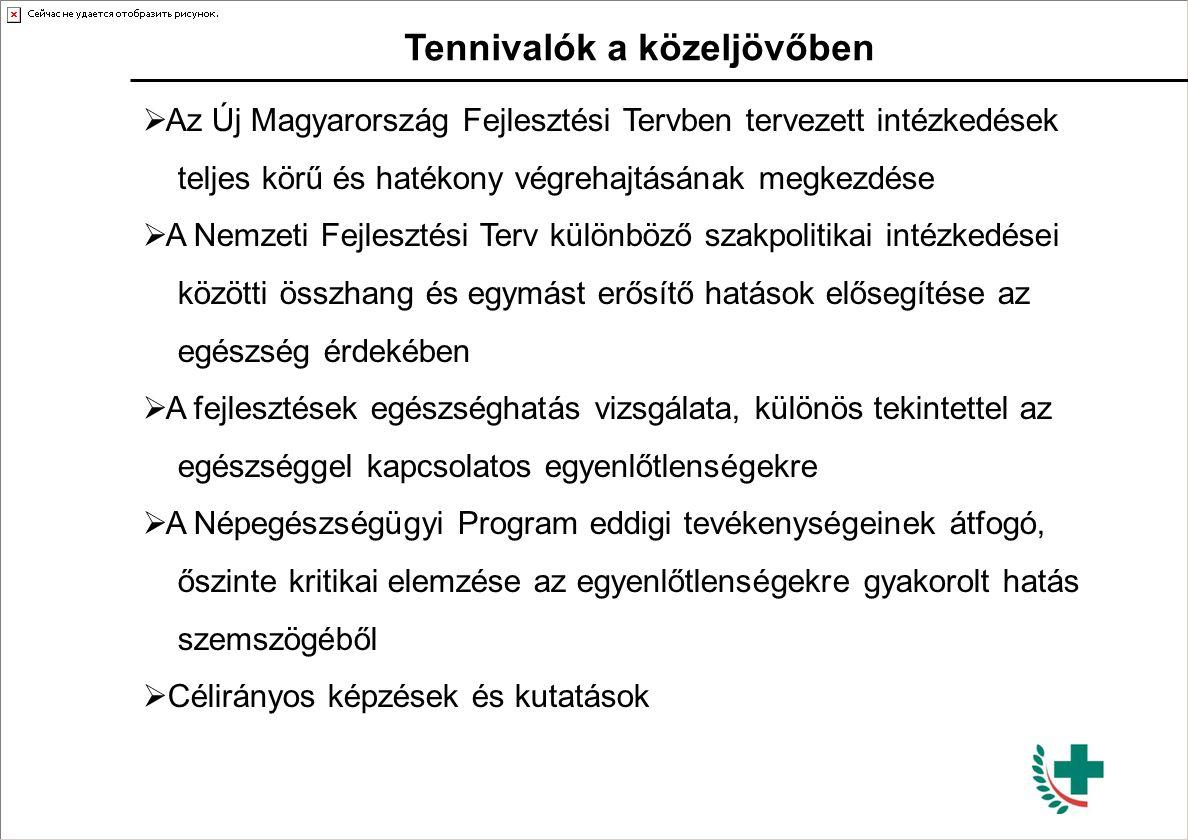 Tennivalók a közeljövőben  Az Új Magyarország Fejlesztési Tervben tervezett intézkedések teljes körű és hatékony végrehajtásának megkezdése  A Nemze