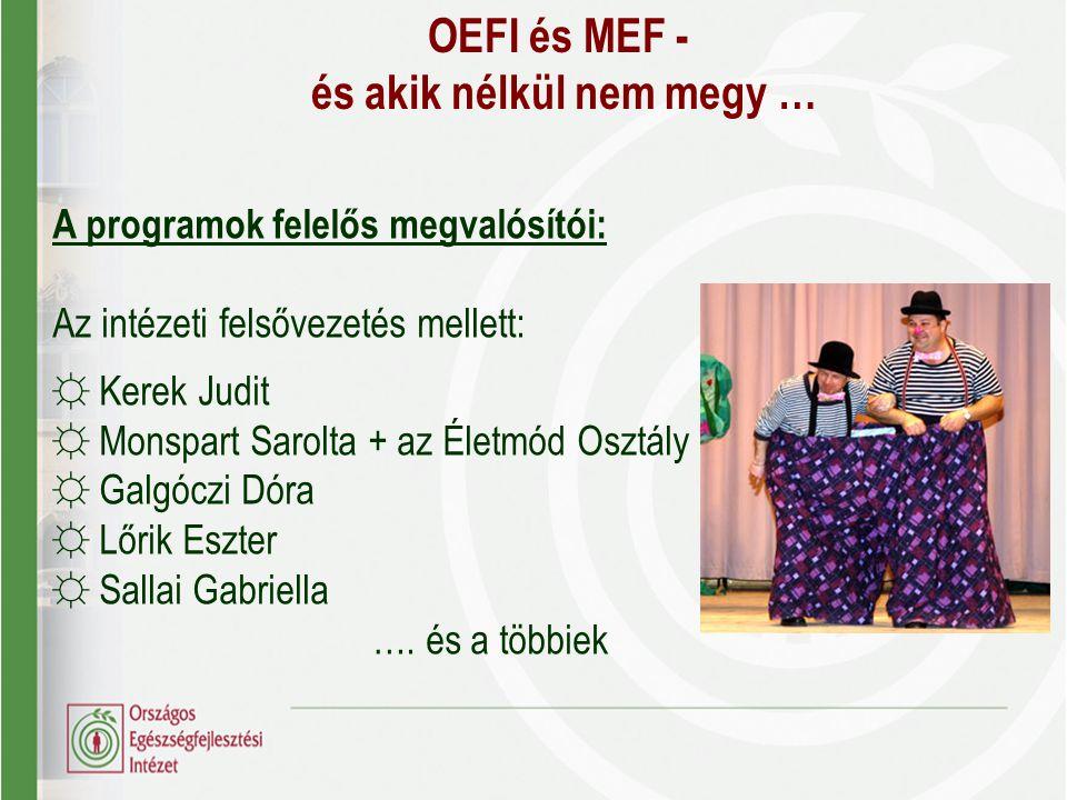 OEFI és MEF - és akik nélkül nem megy … A programok felelős megvalósítói: Az intézeti felsővezetés mellett: ☼ Kerek Judit ☼ Monspart Sarolta + az Élet