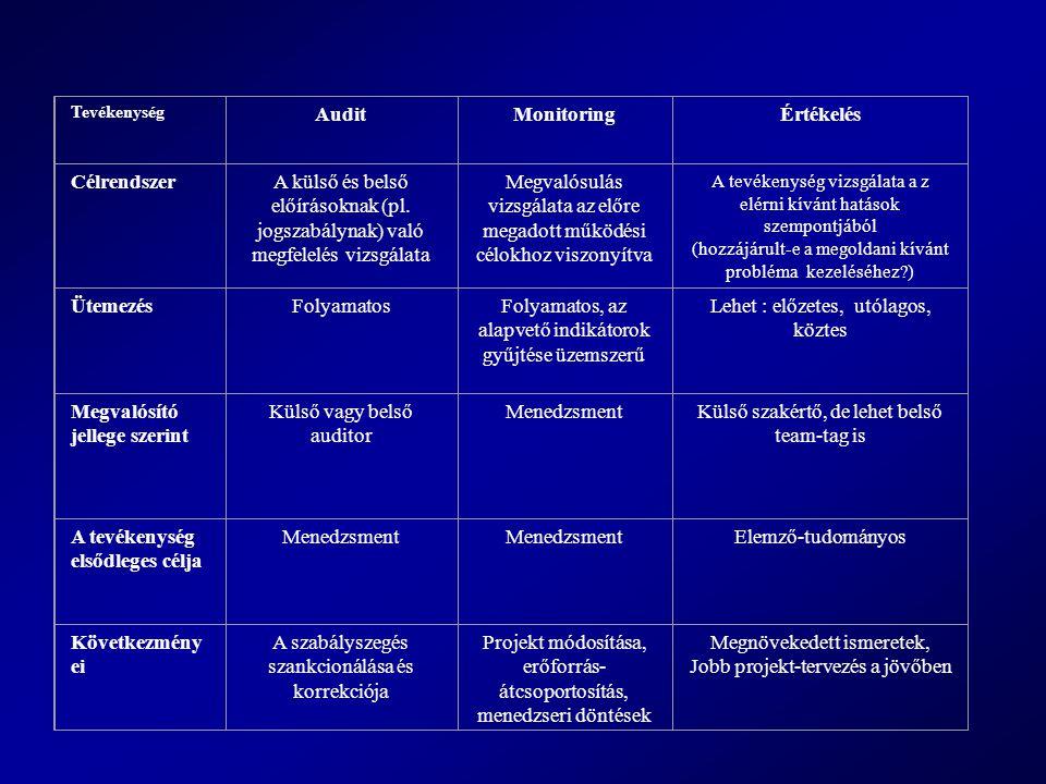 Tevékenység AuditMonitoringÉrtékelés CélrendszerA külső és belső előírásoknak (pl.