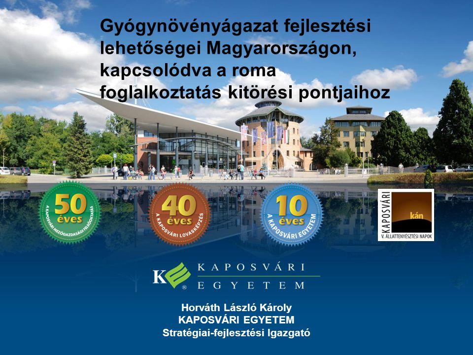 Horváth László Károly KAPOSVÁRI EGYETEM Stratégiai-fejlesztési Igazgató Gyógynövényágazat fejlesztési lehetőségei Magyarországon, kapcsolódva a roma foglalkoztatás kitörési pontjaihoz