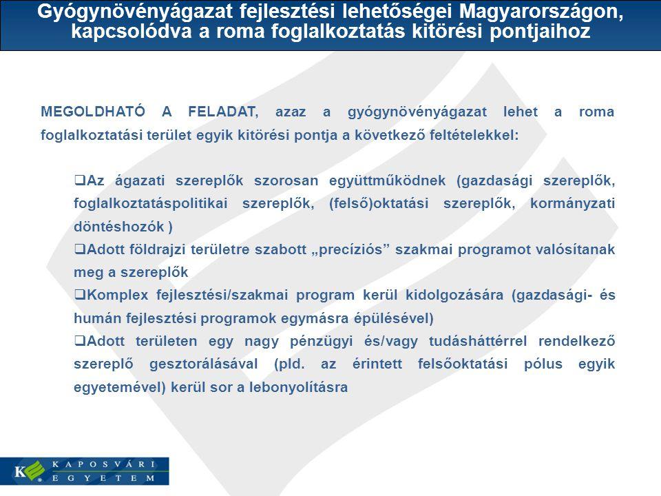 """MEGOLDHATÓ A FELADAT, azaz a gyógynövényágazat lehet a roma foglalkoztatási terület egyik kitörési pontja a következő feltételekkel:  Az ágazati szereplők szorosan együttműködnek (gazdasági szereplők, foglalkoztatáspolitikai szereplők, (felső)oktatási szereplők, kormányzati döntéshozók )  Adott földrajzi területre szabott """"precíziós szakmai programot valósítanak meg a szereplők  Komplex fejlesztési/szakmai program kerül kidolgozására (gazdasági- és humán fejlesztési programok egymásra épülésével)  Adott területen egy nagy pénzügyi és/vagy tudásháttérrel rendelkező szereplő gesztorálásával (pld."""