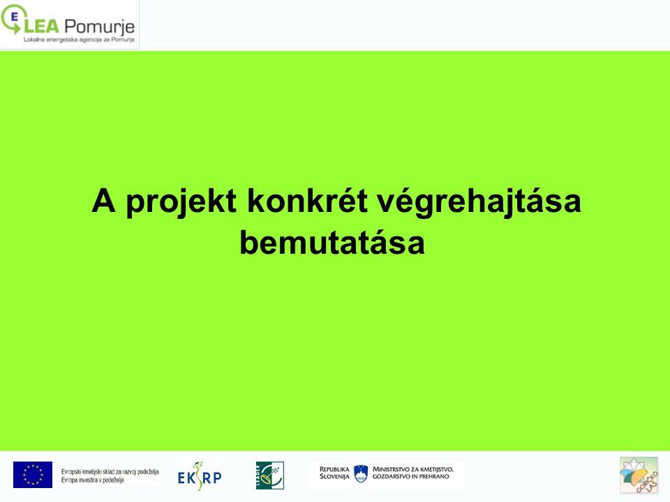 A projekt konkrét végrehajtása bemutatása