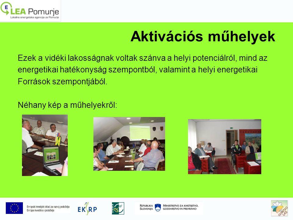 Aktivációs műhelyek Ezek a vidéki lakosságnak voltak szánva a helyi potenciálról, mind az energetikai hatékonyság szempontból, valamint a helyi energetikai Források szempontjából.