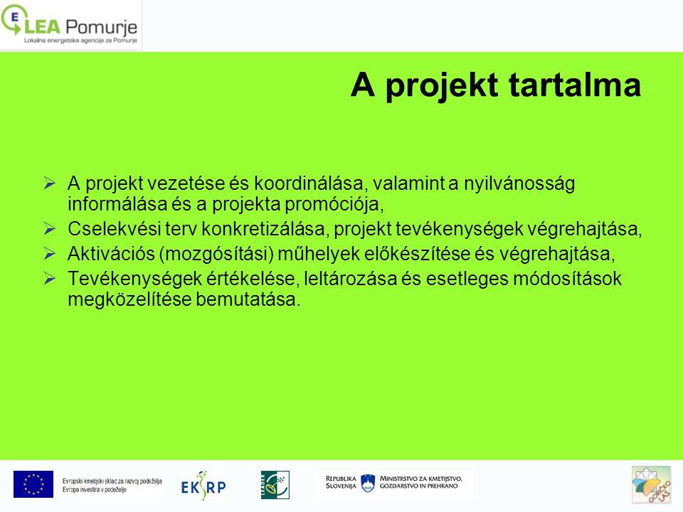 A projekt tartalma  A projekt vezetése és koordinálása, valamint a nyilvánosság informálása és a projekta promóciója,  Cselekvési terv konkretizálása, projekt tevékenységek végrehajtása,  Aktivációs (mozgósítási) műhelyek előkészítése és végrehajtása,  Tevékenységek értékelése, leltározása és esetleges módosítások megközelítése bemutatása.