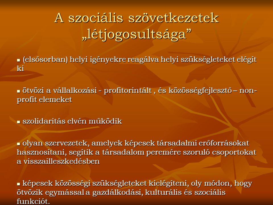 """A szociális szövetkezetek """"létjogosultsága"""" (elsősorban) helyi igényekre reagálva helyi szükségleteket elégít ki (elsősorban) helyi igényekre reagálva"""