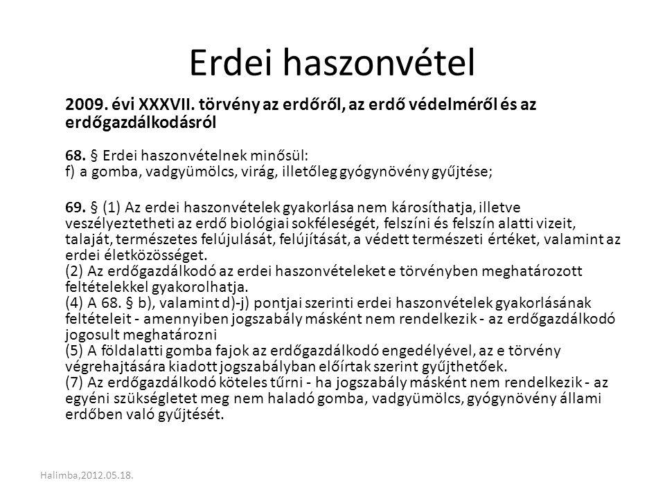 Erdei haszonvétel mértéke 153/2009.(XI.