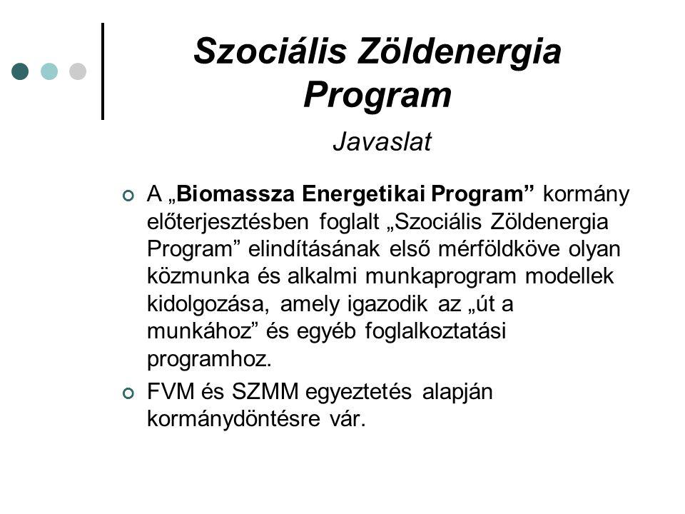 """Szociális Zöldenergia Program Javaslat A """"Biomassza Energetikai Program kormány előterjesztésben foglalt """"Szociális Zöldenergia Program elindításának első mérföldköve olyan közmunka és alkalmi munkaprogram modellek kidolgozása, amely igazodik az """"út a munkához és egyéb foglalkoztatási programhoz."""
