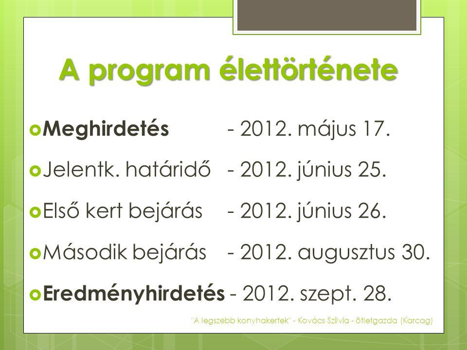 A program élettörténete  Meghirdetés - 2012. május 17.