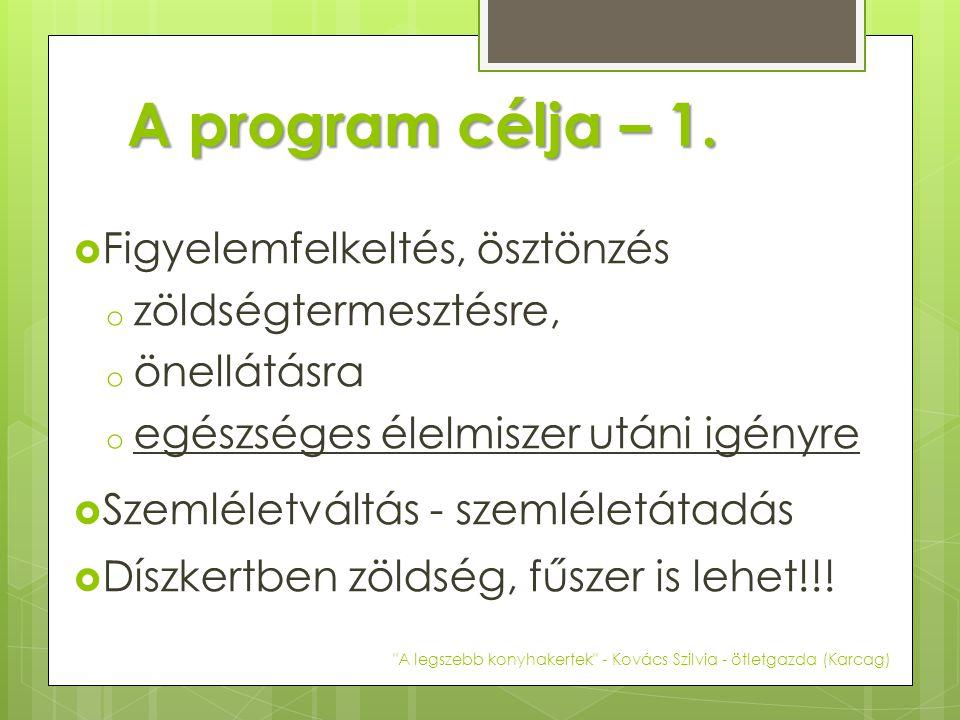 A program célja – 2.
