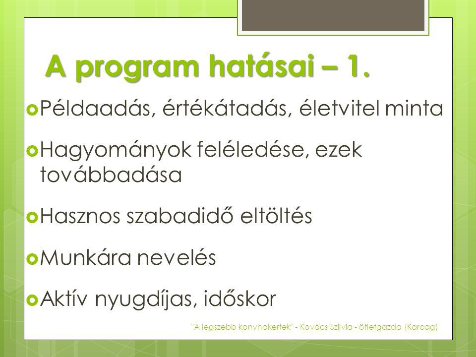 A program hatásai – 1.