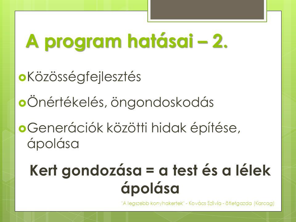 A program hatásai – 2.