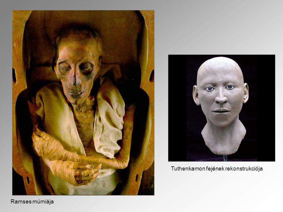 Ramses múmiája Tuthenkamon fejének rekonstrukciója