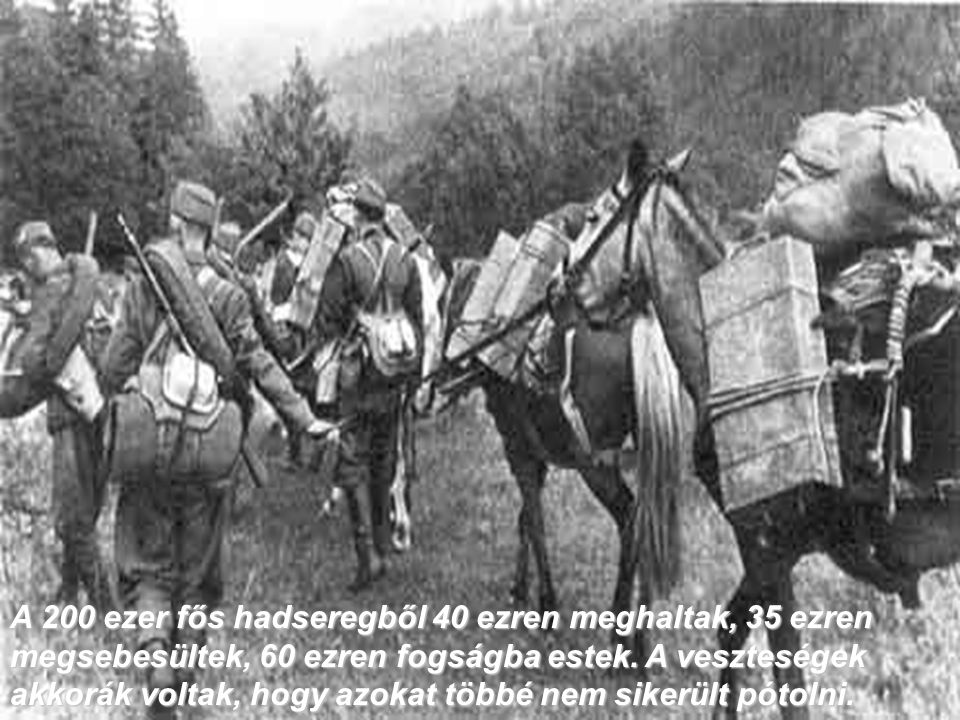 A 200 ezer fős hadseregből 40 ezren meghaltak, 35 ezren megsebesültek, 60 ezren fogságba estek. A veszteségek akkorák voltak, hogy azokat többé nem s