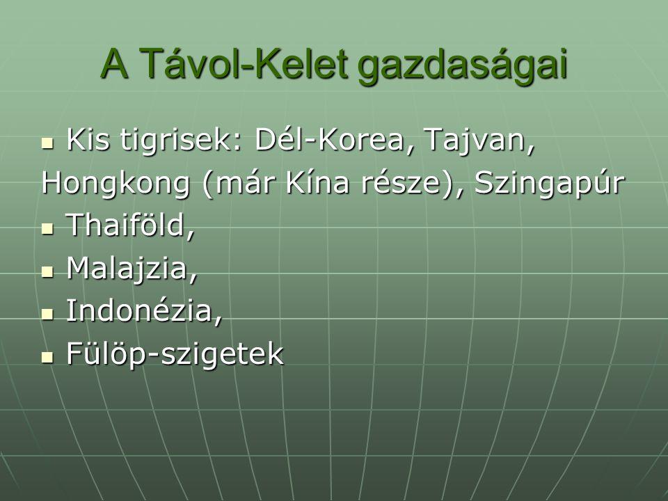 A Távol-Kelet gazdaságai Kis tigrisek: Dél-Korea, Tajvan, Kis tigrisek: Dél-Korea, Tajvan, Hongkong (már Kína része), Szingapúr Thaiföld, Thaiföld, Malajzia, Malajzia, Indonézia, Indonézia, Fülöp-szigetek Fülöp-szigetek