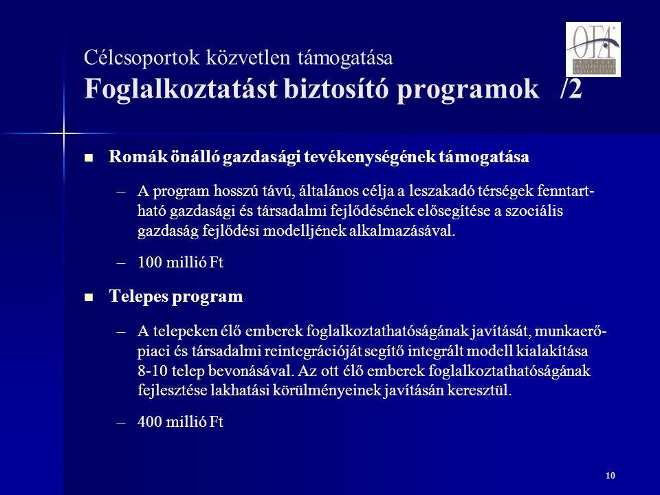 10 Célcsoportok közvetlen támogatása Foglalkoztatást biztosító programok /2 Romák önálló gazdasági tevékenységének támogatása – –A program hosszú távú, általános célja a leszakadó térségek fenntart- ható gazdasági és társadalmi fejlődésének elősegítése a szociális gazdaság fejlődési modelljének alkalmazásával.