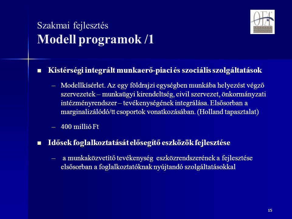 15 Szakmai fejlesztés Modell programok /1 Kistérségi integrált munkaerő-piaci és szociális szolgáltatások – –Modellkísérlet.