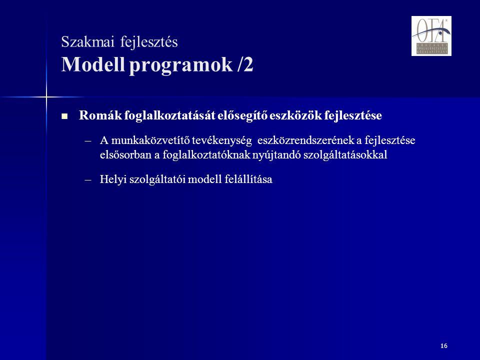 16 Szakmai fejlesztés Modell programok /2 Romák foglalkoztatását elősegítő eszközök fejlesztése – –A munkaközvetítő tevékenység eszközrendszerének a fejlesztése elsősorban a foglalkoztatóknak nyújtandó szolgáltatásokkal – –Helyi szolgáltatói modell felállítása