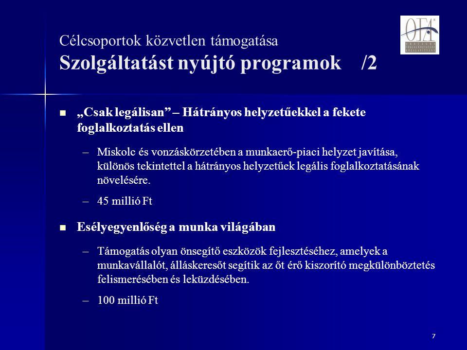 18 OFA Hálózat 2008.évi tevékenységei 1/ Térítésmentes szakmai támogató szolgáltatás Hagyományos OFA programoknál Hagyományos OFA programoknál - roma, telepes, integrátori, mobilitás, stb.