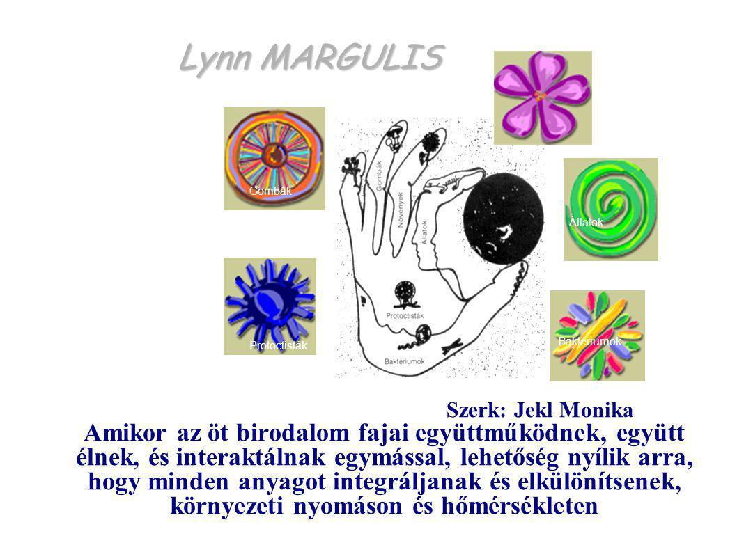 Lynn MARGULIS Protoctisták Baktériumok Állatok Gombák Növények Szerk: Jekl Monika Amikor az öt birodalom fajai együttműködnek, együtt élnek, és intera