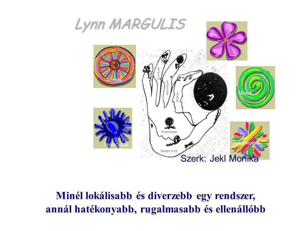 Lynn MARGULIS Protoctisták Baktériumok Állatok Gombák Növények Minél lokálisabb és diverzebb egy rendszer, annál hatékonyabb, rugalmasabb és ellenálló