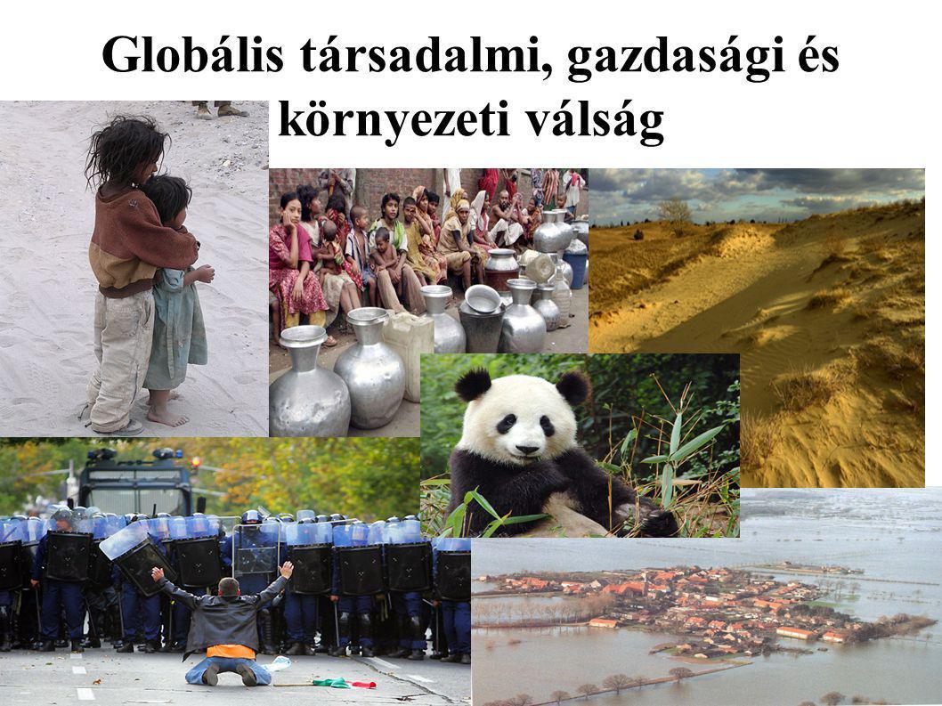 Globális társadalmi, gazdasági és környezeti válság