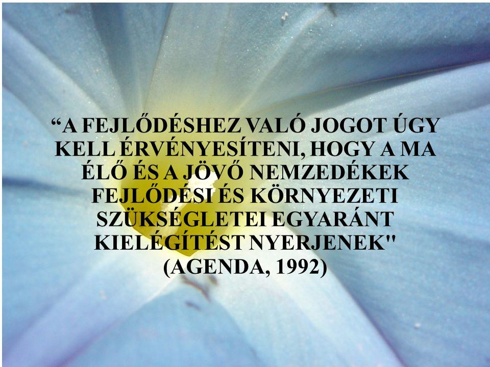 A FEJLŐDÉSHEZ VALÓ JOGOT ÚGY KELL ÉRVÉNYESÍTENI, HOGY A MA ÉLŐ ÉS A JÖVŐ NEMZEDÉKEK FEJLŐDÉSI ÉS KÖRNYEZETI SZÜKSÉGLETEI EGYARÁNT KIELÉGÍTÉST NYERJENEK (AGENDA, 1992)