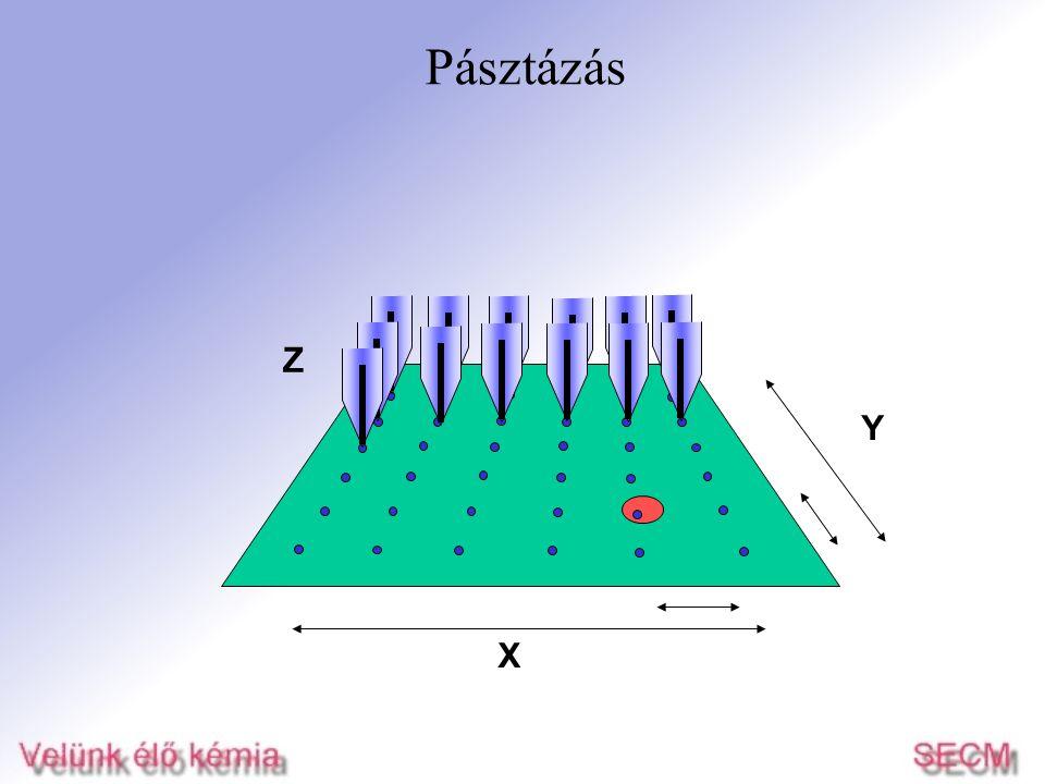 A mikroszkóp felépítése mozgató motorok mikroelektród mintatartó rezgésmentes alapon 