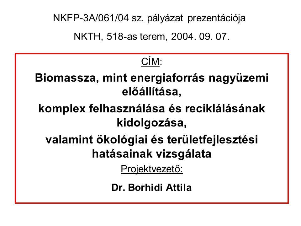 Megoldandó feladatok a Dél-Dunántúlon: - Megújuló energiaforrások (ez elsősorban biomassza) termelésének kialakítása.