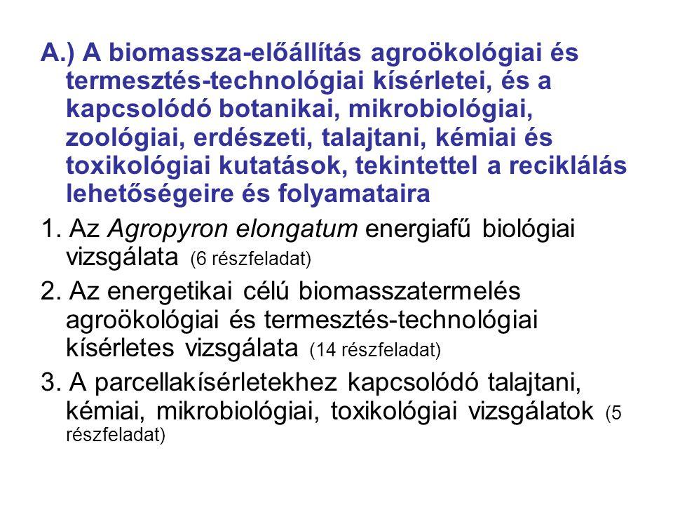 A.) A biomassza-előállítás agroökológiai és termesztés-technológiai kísérletei, és a kapcsolódó botanikai, mikrobiológiai, zoológiai, erdészeti, talajtani, kémiai és toxikológiai kutatások, tekintettel a reciklálás lehetőségeire és folyamataira 1.