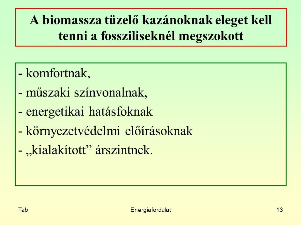 TabEnergiafordulat13 A biomassza tüzelő kazánoknak eleget kell tenni a fossziliseknél megszokott - komfortnak, - műszaki színvonalnak, - energetikai h