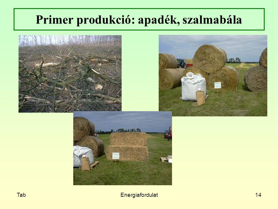 TabEnergiafordulat14 Primer produkció: apadék, szalmabála